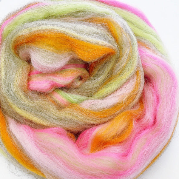 Angel's Delight House Blend Wooltops for Felting & Spinning