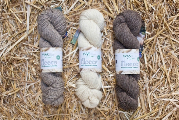 WYS Fleece Blue Faced Leicester Fleece DK Ecru 01 100g