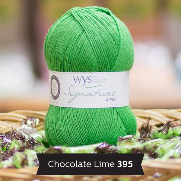 WYS Signature 4 ply yarn Chocolate Lime 395
