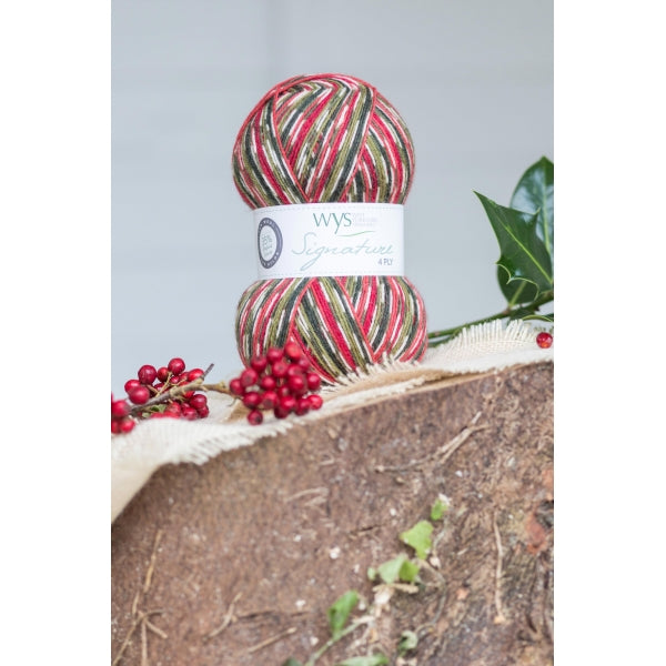 WYS Signature 4 ply yarn Holly Berry 886