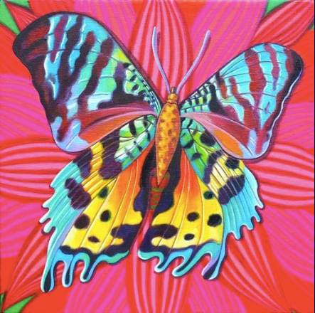 Sunset Moth Greetings Card by Jane Tattersfield