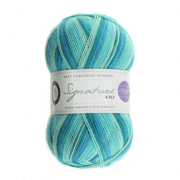 WYS Signature 4 ply yarn Seascape 873
