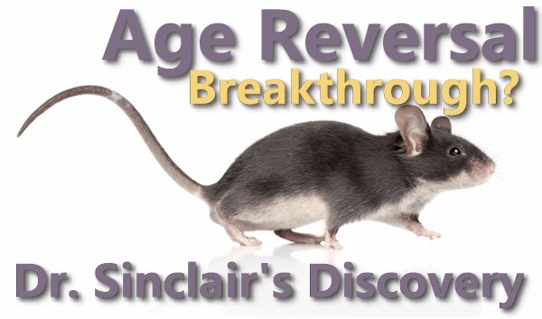 A Bigger Discovery than CRSPR?  Dr. Sinclair's Research on Age Reversal