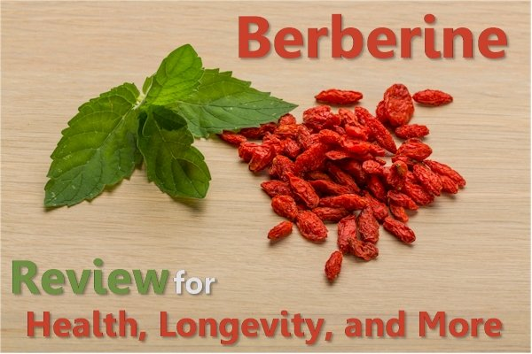A Complete Review of Berberine for Health and Longevity Versus Metformin