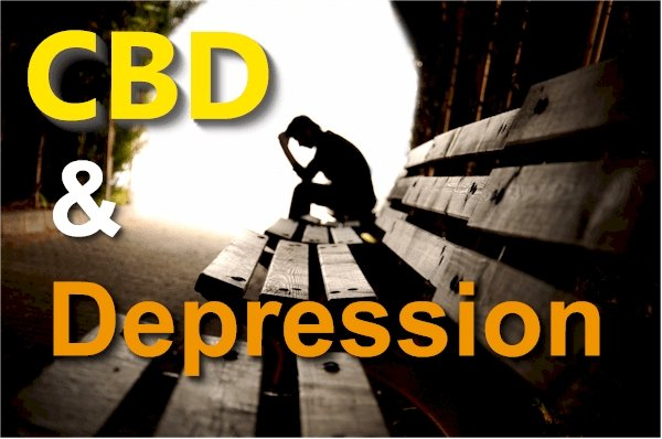 A Comprehensive and Updated Look at CBD and Depression Research