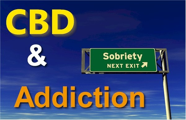 A Comprehensive Look at CBD and the Pathways of Addiction