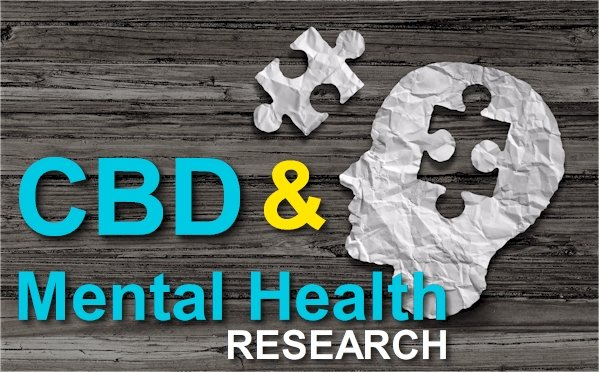 A Comprehensive Look at CBD and the Pathways of Mental Health