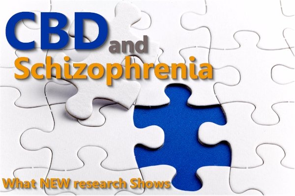An Exhaustive Guide of CBD's Effects for Schizophrenia and Psychosis from Research