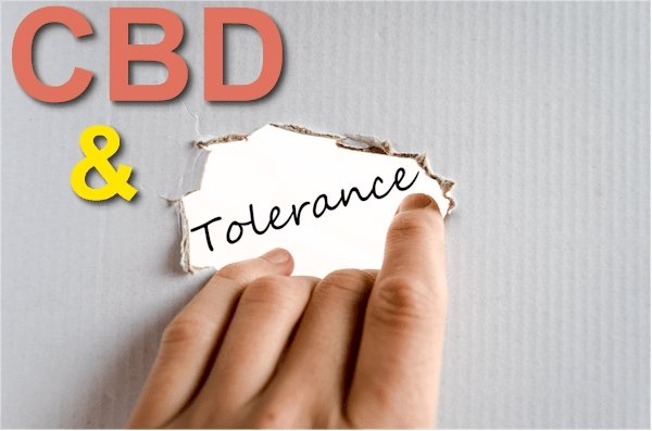 Can You Build Tolerance to CBD Oil?