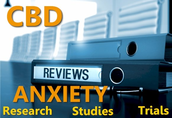 CBD and Anxiety Research, Studies, and Trials
