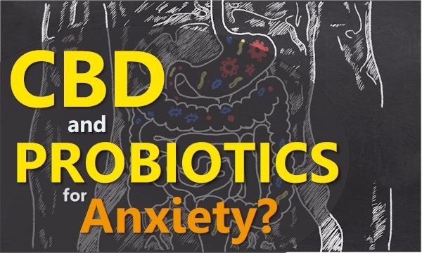 CBD and Probiotics for Anxiety - the 1-2 Punch