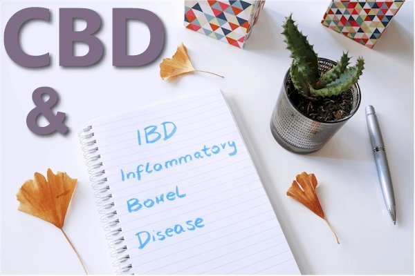 CBD and the Pathways of IBD or IBS