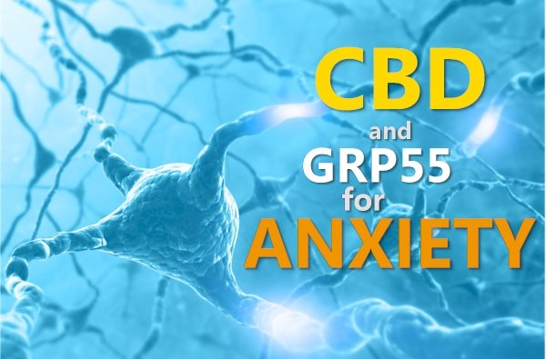 CBD, GPR55, and Anxiety Review