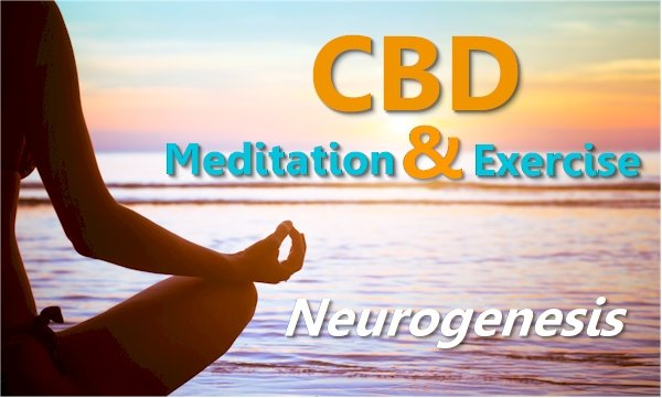 CBD, Meditation, Exercise and Neurogenesis for Anxiety - A path to long term change