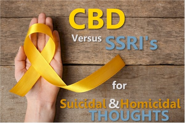 CBD versus SSRI for Homicidal and Suicidal Thoughts