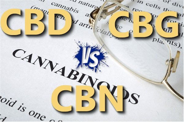 CBD vs CBG vs CBN - Actual Research Beyond The Hype