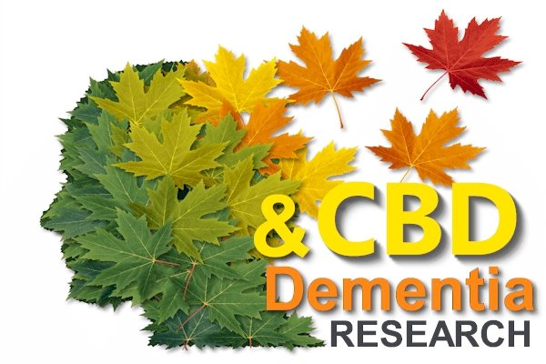 Comprehensive and Updated Research on CBD and the Pathways of Dementia and Alzheimer's