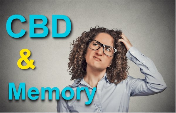 Does CBD Affect Memory  - Updated Research