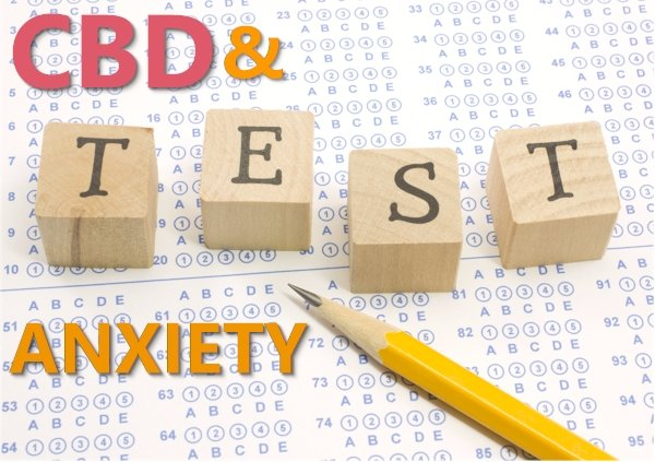 Does CBD Help with Test Taking Anxiety