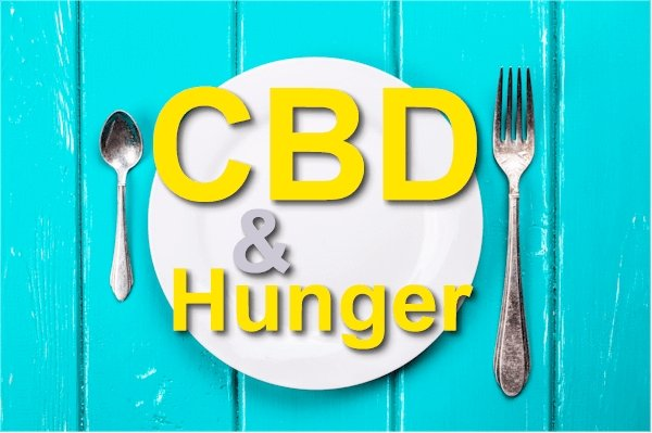 Does CBD Make You Hungry - Can it Increase Appetite?