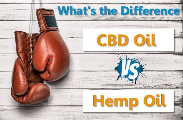Hemp Oil Versus CBD Oil - What Gives?