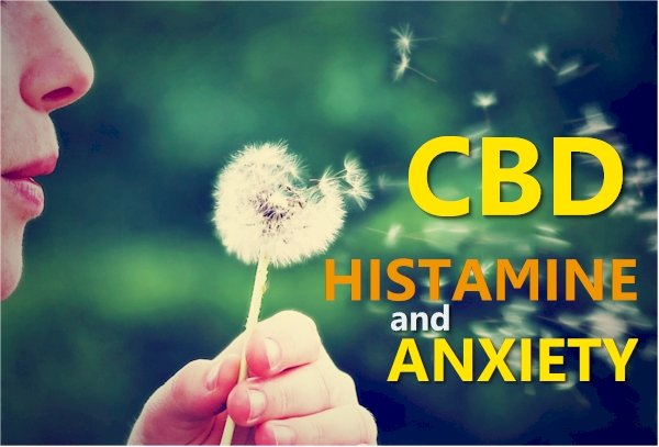 Histamine, Anxiety, and CBD