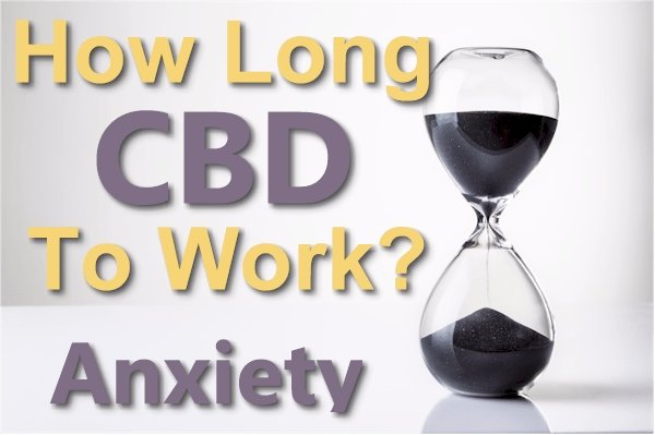 How Long Does It Take CBD to Work For Anxiety?
