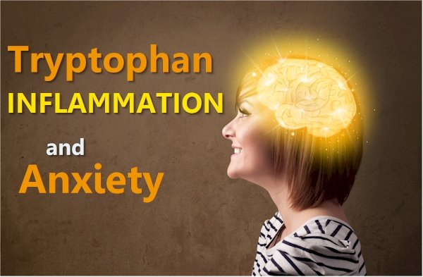 Is Tryptophan the Connection between Inflammation and Anxiety?