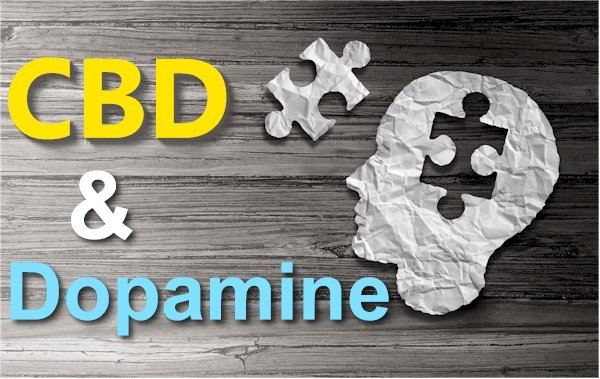 New Research on CBD and Dopamine - A Key to Addiction, Motivation, and Mental Health