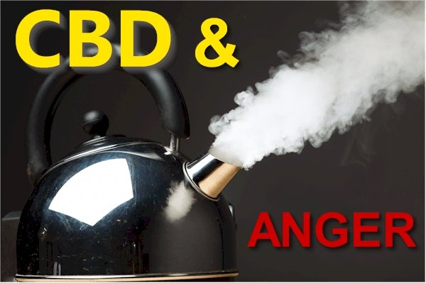 Research CBD and the Pathways of Anger, Rage, and Aggression
