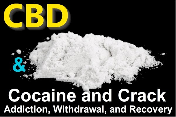 Research on CBD and Cocaine or Crack Addiction, Withdrawals, and Recovery