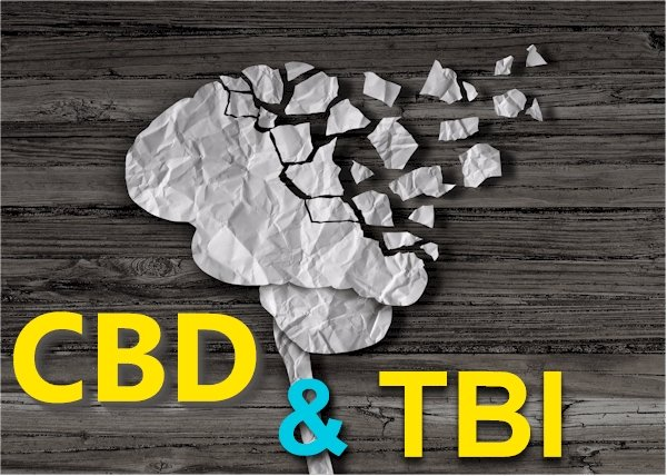 Research on CBD and TBI (Traumatic Brain Injury) and Concussion