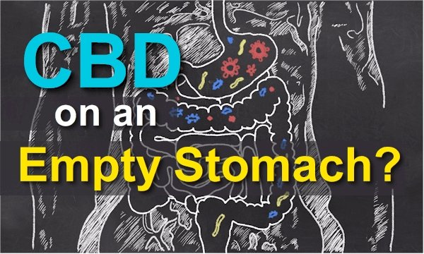 Should CBD Be Taken On An Empty Stomach