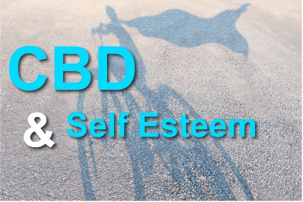 The Fascinating Intersection Between CBD, Self Esteem, and the Hippocampus
