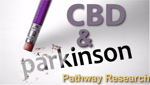 Updated Research on CBD and the Pathways of Parkinson's