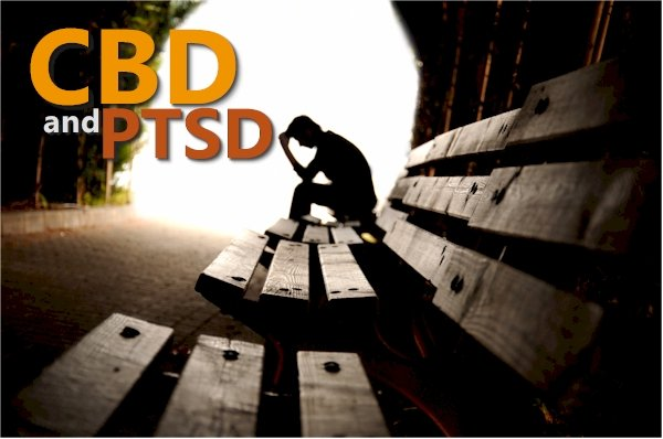 What Does New Research Show for CBD and PTSD
