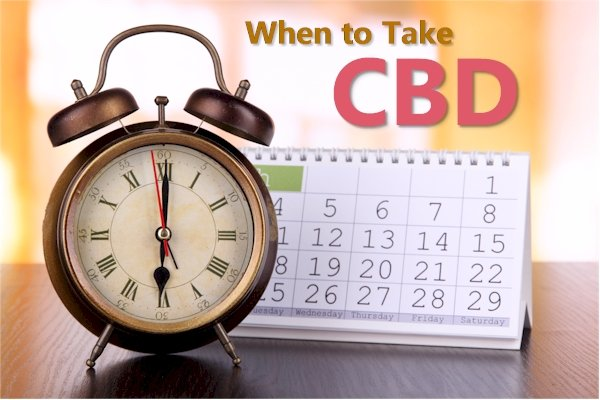 What Is The Best Time Of The Day To Take CBD
