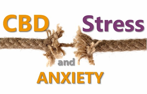 What Research Shows for CBD's effects on Stress and Anxiety