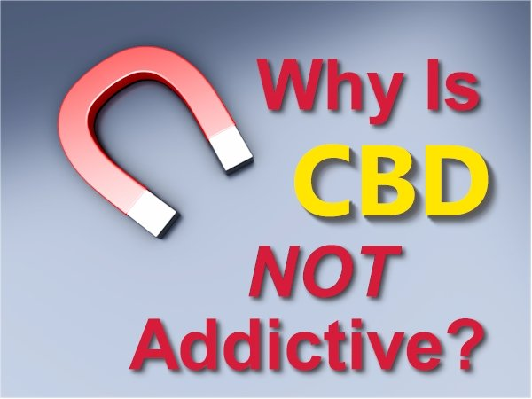 Why is CBD Not Addicting or Habit Forming?