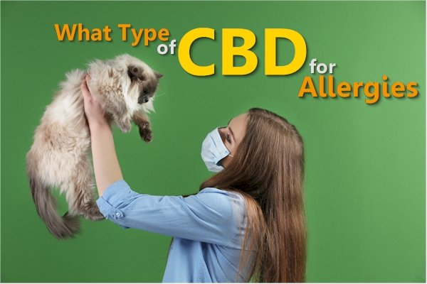 Why You Should Only Take CBD Isolate for Histamine and Allergy Issues