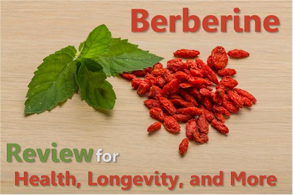 berberine versus metformin for health longevity and more