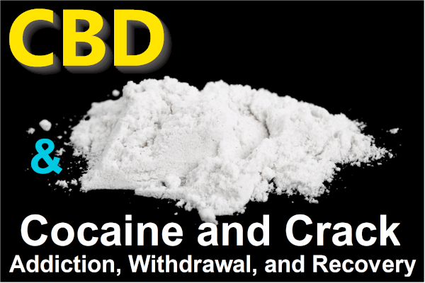CBD and cocaine or crack addiction withdrawals and recovery