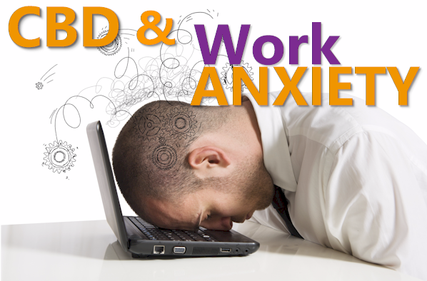 can cbd help with work anxiety