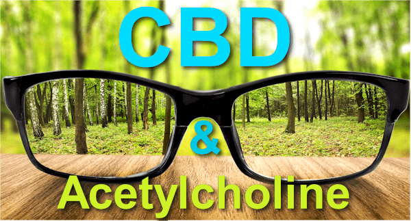 CBD and acetylcholine for mental health