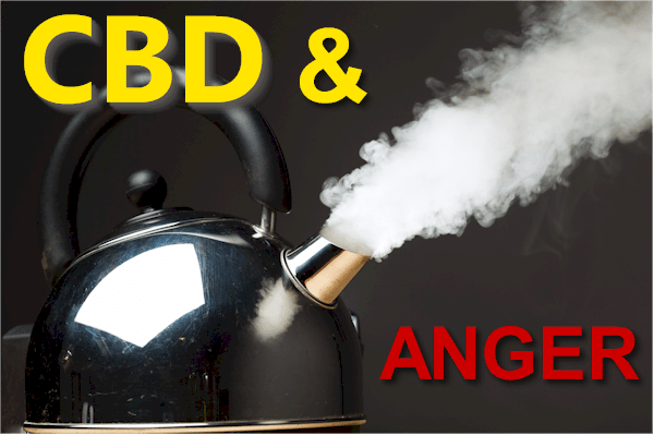 cbd and the pathways of rage, anger, and irritability