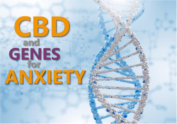 cbd-and-genes-for-anxiety