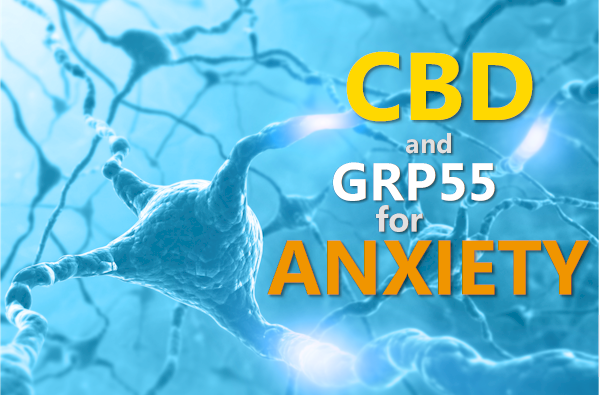 CBD and GPR55 for anxiety