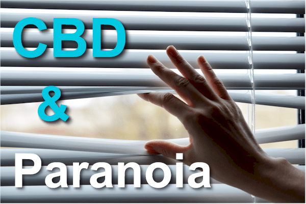 CBD and Paranoia