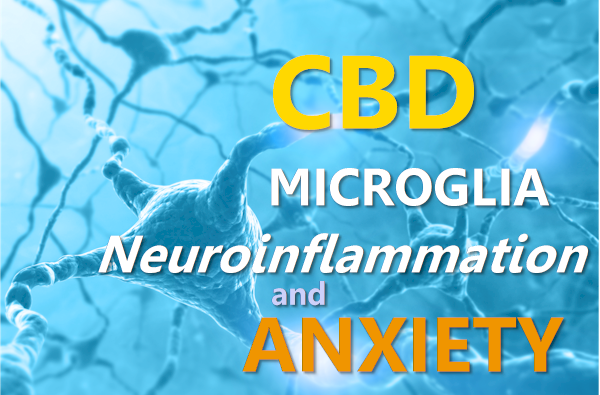 cbd microglia cytokines and neuroinflammation