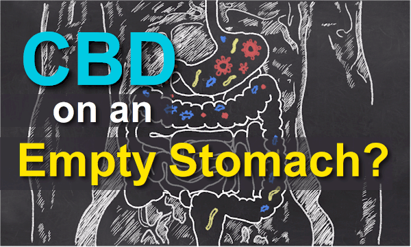 can you take cbd on an empty stomach